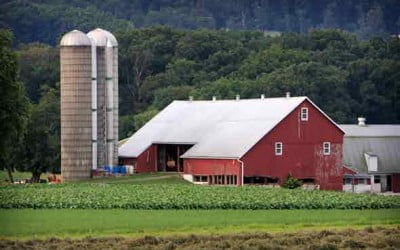 The Finer Points of Farm Insurance