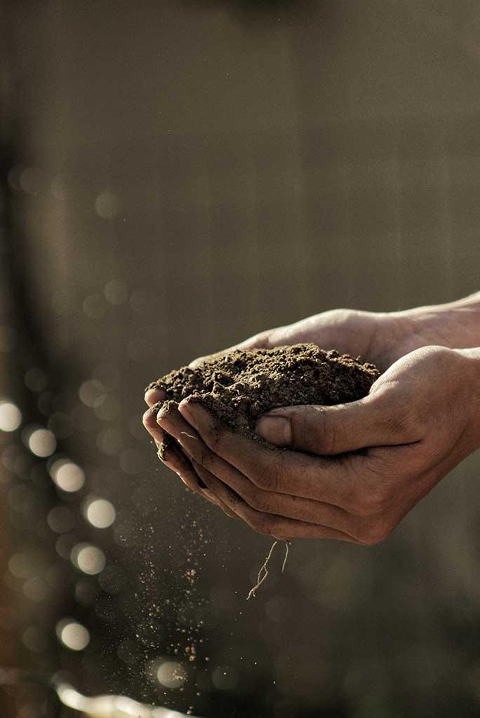Farm soil in hand